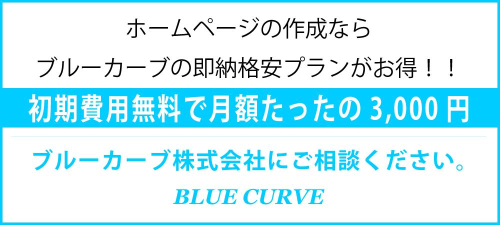 ホームページ作成費用が格安-ブルーカーブ株式会社