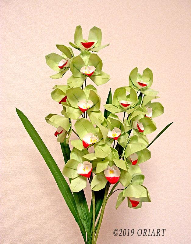 立体お花折紙「シンビジウム」
