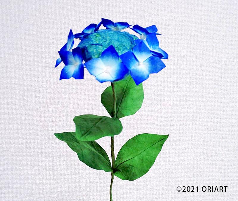 立体お花おりがみ「ガクアジサイ」