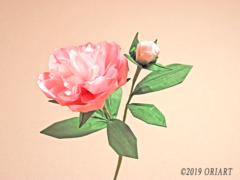 立体お花おりがみ作品「芍薬(シャクヤク)」