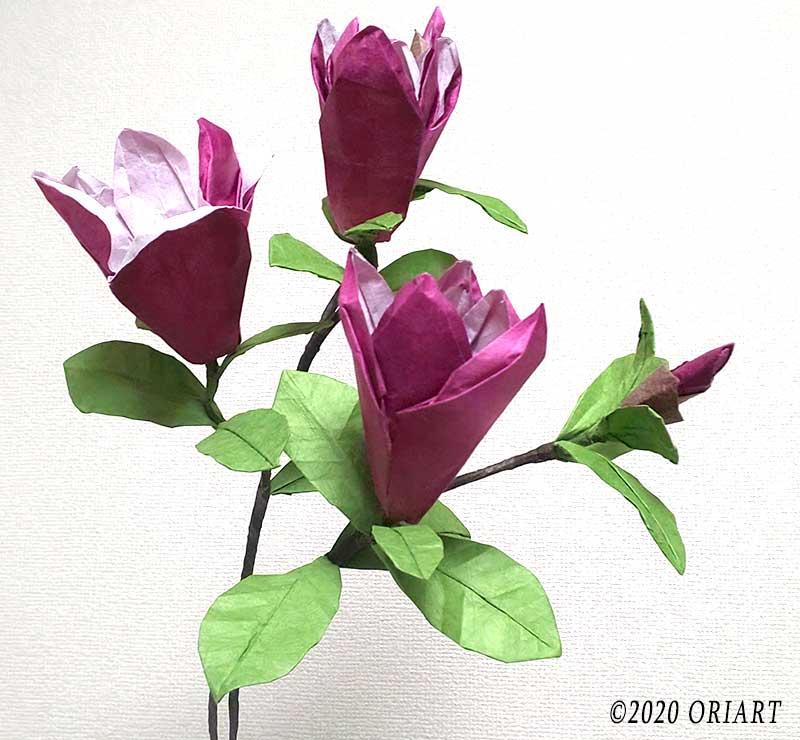 おりがみ立体お花作品「紫木蓮」