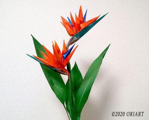 お花のおりがみ「ストレリチア(極楽鳥花)」の作り方
